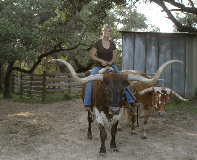Don't Mess with Texas Women (Texas Artist Sandra Spencer on her Longhorn Cinco)