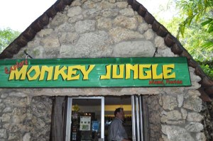 Monkey Jungle in South Dade welcomes hundreds of animal lovers each year.